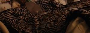 cory zebra